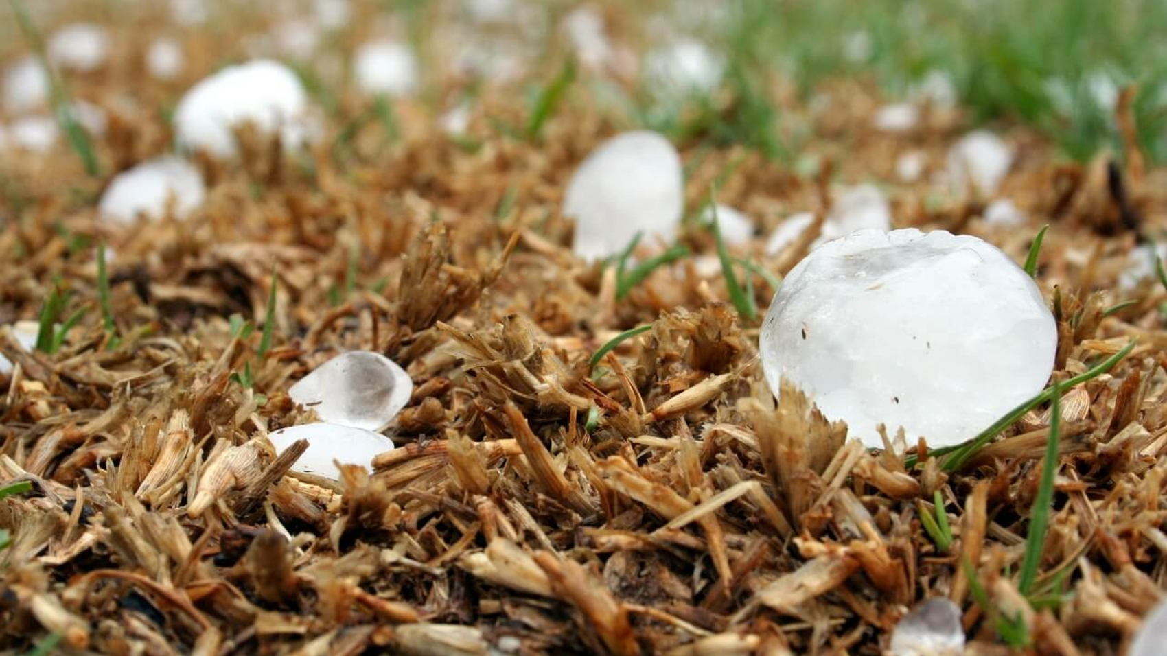 hail-1614239_1280